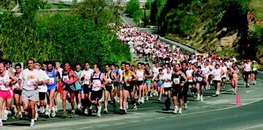 Mitja-Marato-Terrassa-2005-0006